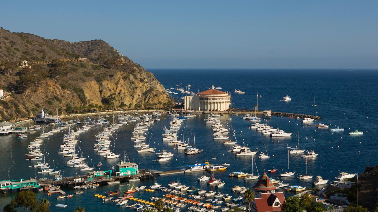 Catalina Island Avalon Scenic Tour with Roundtrip Transfers