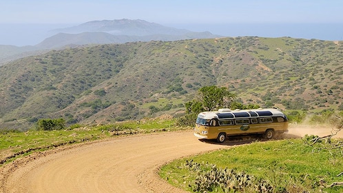 vintage looking bus driving on a dirt road on Catalina Island