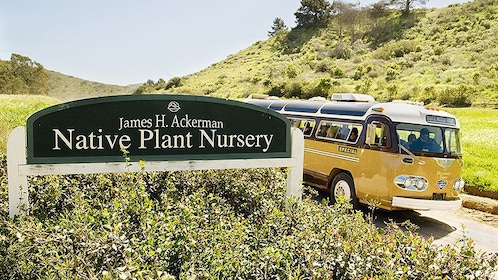 bus entering a native plant nursery on Catalina Island
