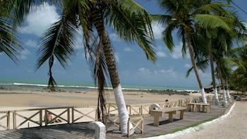 Pipa Beach Full-Day Tour