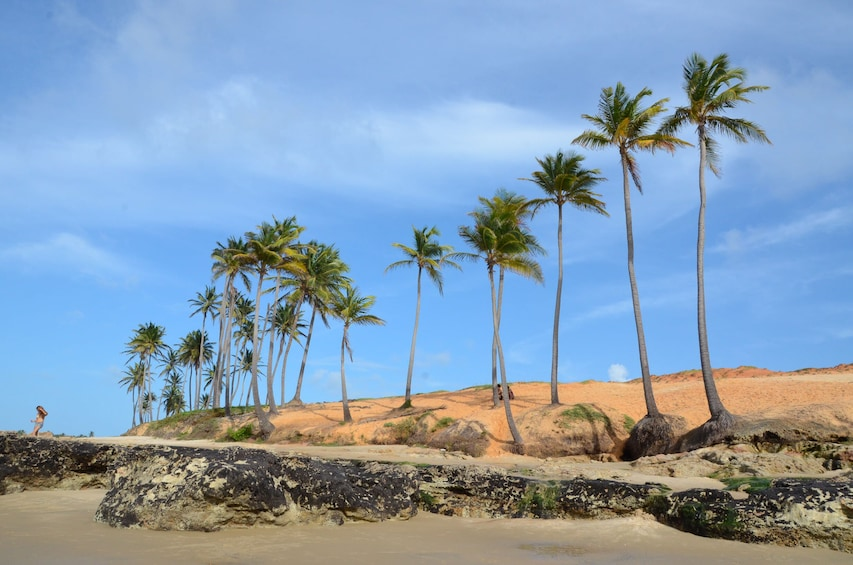 Show item 1 of 7. Lagoinha, the Postcard Beach