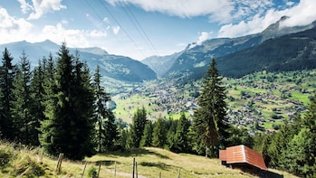 Grindelwald & Interlaken Day Trip from Lucerne