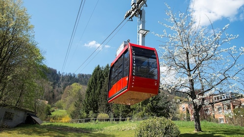 Zurich & Surroundings tour by Coach, Cable Car and Ferry