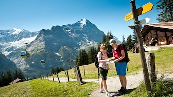 Grindelwald & Interlaken Day Trip from Zurich