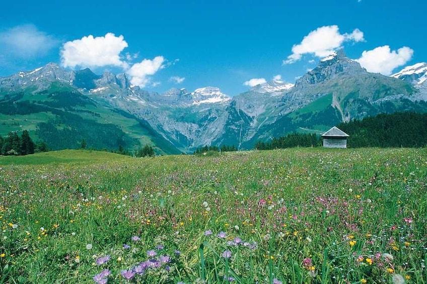 Lucerne & Engelberg Alpine Village Day Trip