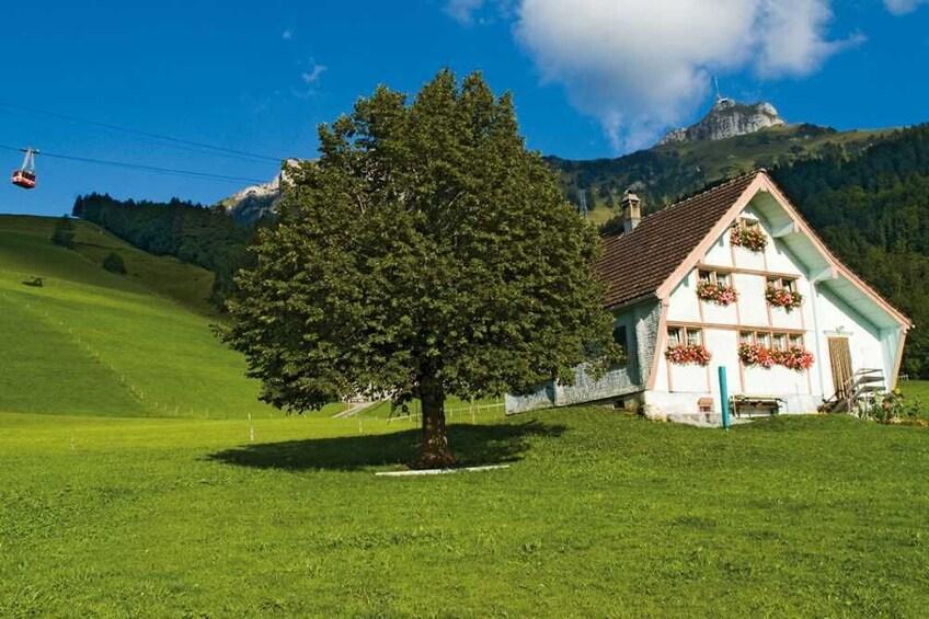Foto 4 von 8 laden Small-Group Mountains, Cheese & Chocolate Tour
