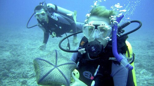 Two scuba divers exploring a coral reef in Antalya