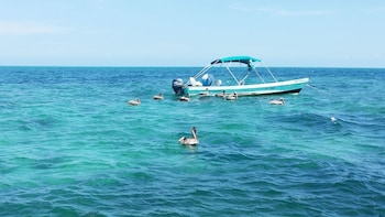 Cabo Catoche Snorkelling & Fishing Tour