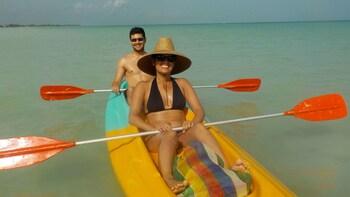 Kayak Tour in the Mangroves