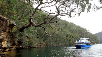 Wilderness & Aboriginal Explorer Tour