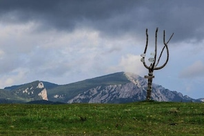 Active week in Transylvania