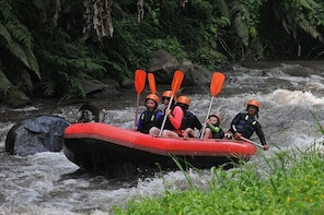 Traditional cycling tour and Ayung Rafting with Surya Bintang Adventure