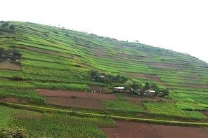10 Day Uganda and Rwanda adventure