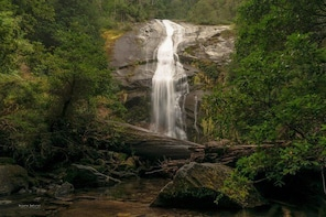 Huerquehue National Park, trekking and photography