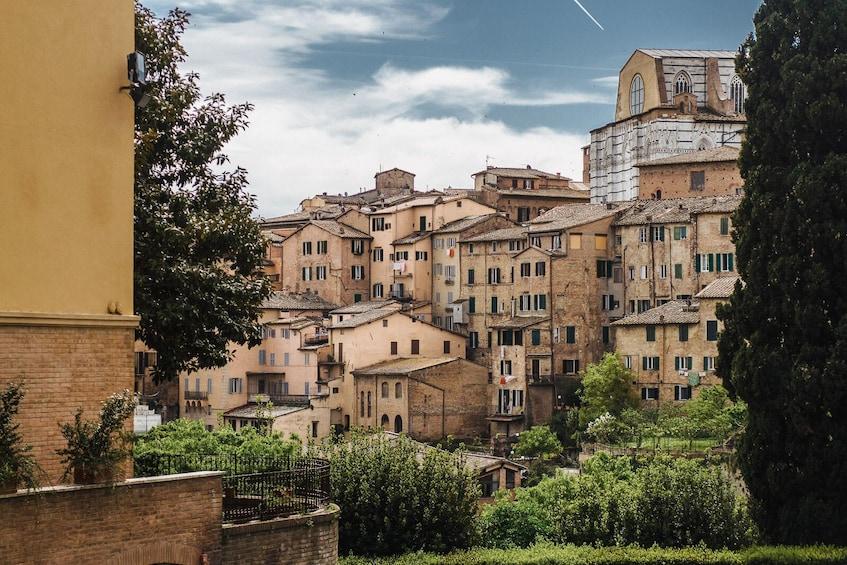 Show item 10 of 10. Small-Group Tuscany Day Trip to Siena & San Gimignano