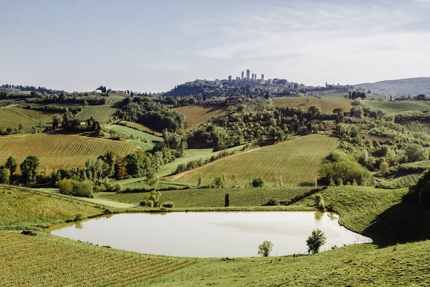 Show item 1 of 10. Small-Group Tuscany Day Trip to Siena & San Gimignano