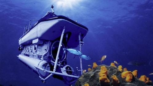 Blue Safari Submarine touring the ocean floor