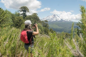 Conguillío National Park, trekking and photography
