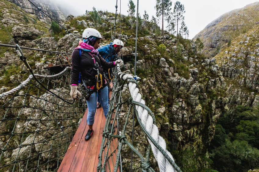 Show item 3 of 10. Cape Canopy Tour in the Hottentots Holland Nature Reserve