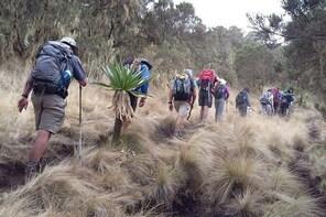 Simien Mountains 3 Day Trekking tours