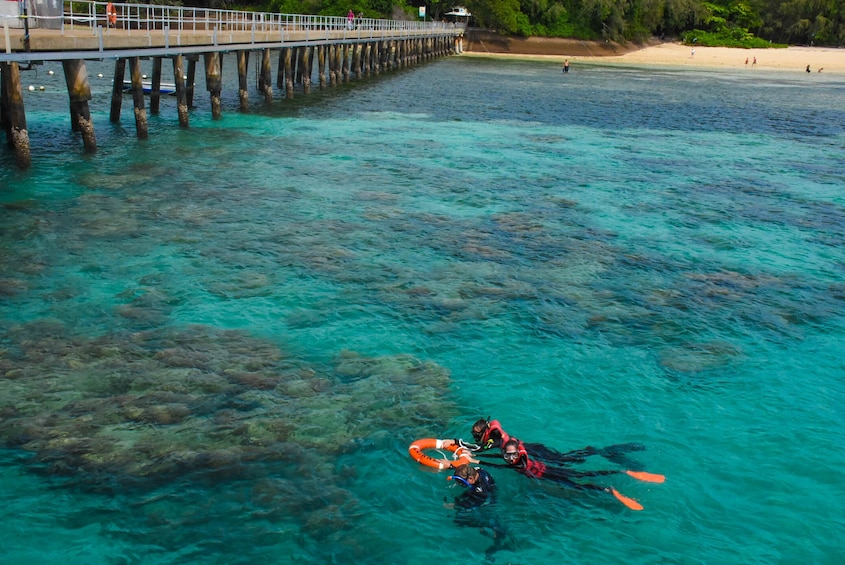 Half-Day Green Island, Great Barrier Reef Cruise