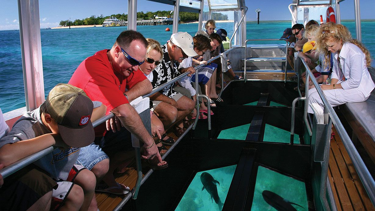 Peek through the glass bottom boat to see the marine life in the depths below
