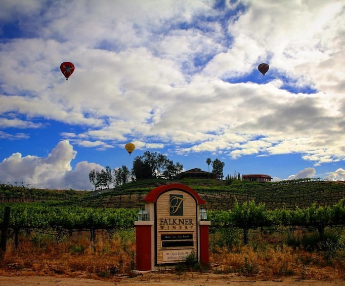 Show item 3 of 10. Sunrise Hot Air Balloon Ride in Temecula Wine Country