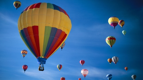 Colorful hot air balloons in San Diego