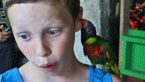 Boy with bird on his shoulder