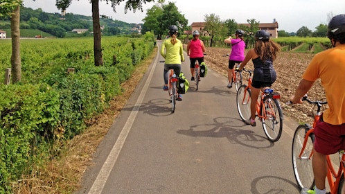 Bike around Amarone to explore the sites and sounds of the region