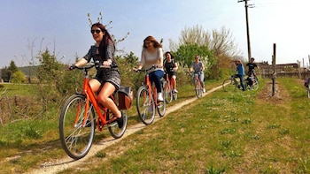 Half-Day Amarone Wine Tasting E-Bike Tour