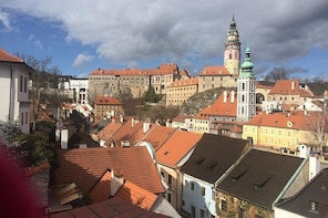 Private walking tour to the Cesky Krumlov Old Town and Castle Grounds 4 hou...