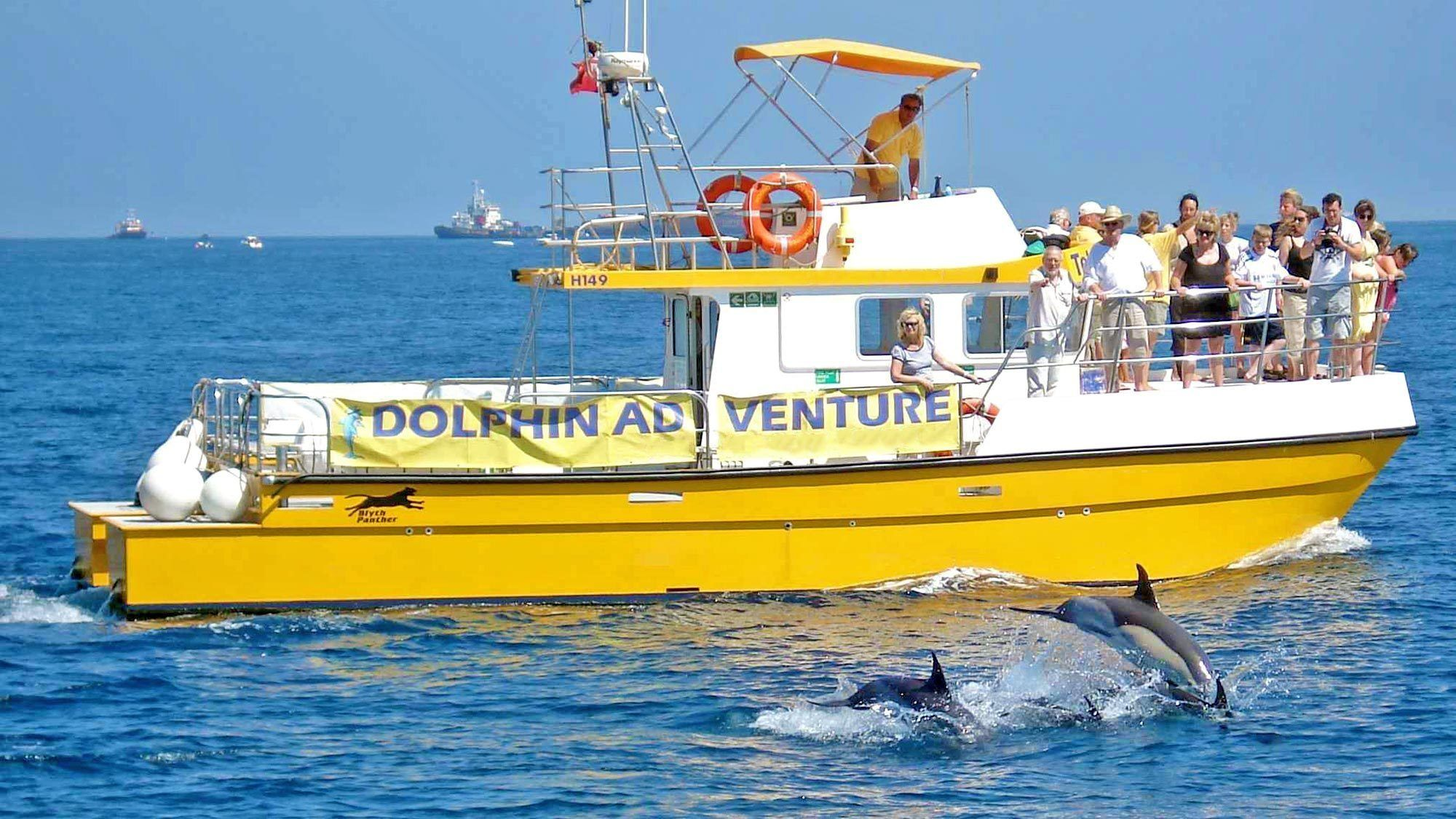 Dolphin watching boat with passengers in Gibraltar