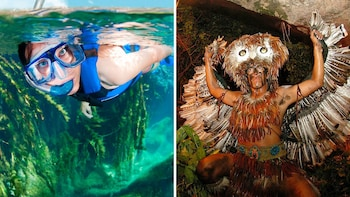 Xcaret & Xel-Há Tickets with Transportation and Lunch