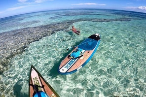 Stand up paddle rental with GoPro on board