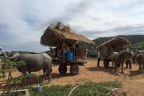 Full-Day Kampot & Kep with a local Tuk Tuk Tours