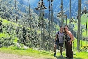 Cocora valley tour hummingbird circuit