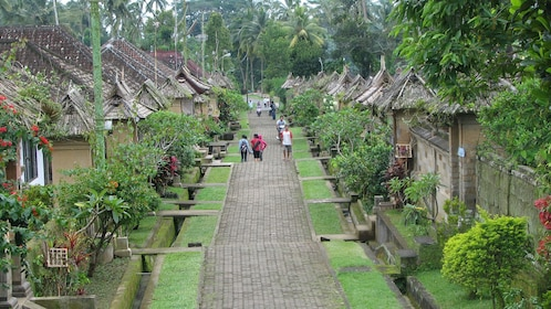 Walking down a paved road in Bali