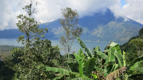 Green mountainous landscape in Bali