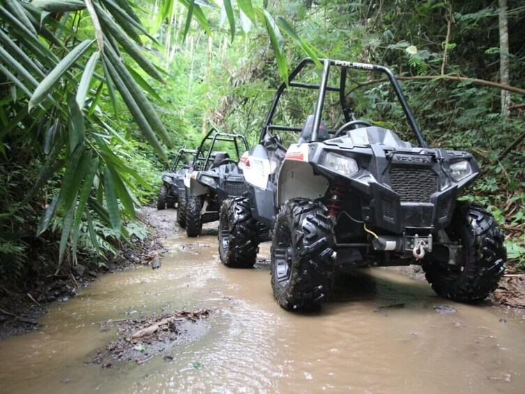 Tampilkan item 9 dari 9. Quad or Buggy Driving Adventure & Tubing Excursion