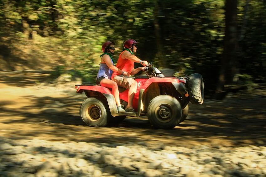 Show item 10 of 10. ATV Adventure