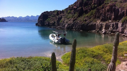 Boat anchored near the shore on Danzante Island