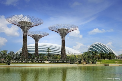 Gardens by the Bay - Day View (Put this as Key Picture) - web.jpg