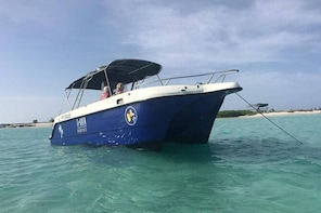 Small Day Cruise (Ilet caret, mangrove, coral reef