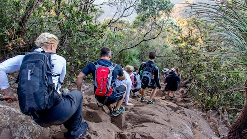 group of hikers slowly scaling down a steep rocky mountainside in Australia
