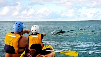 Kayaking, Snorkeling & Hiking Adventure Tour with Lunch
