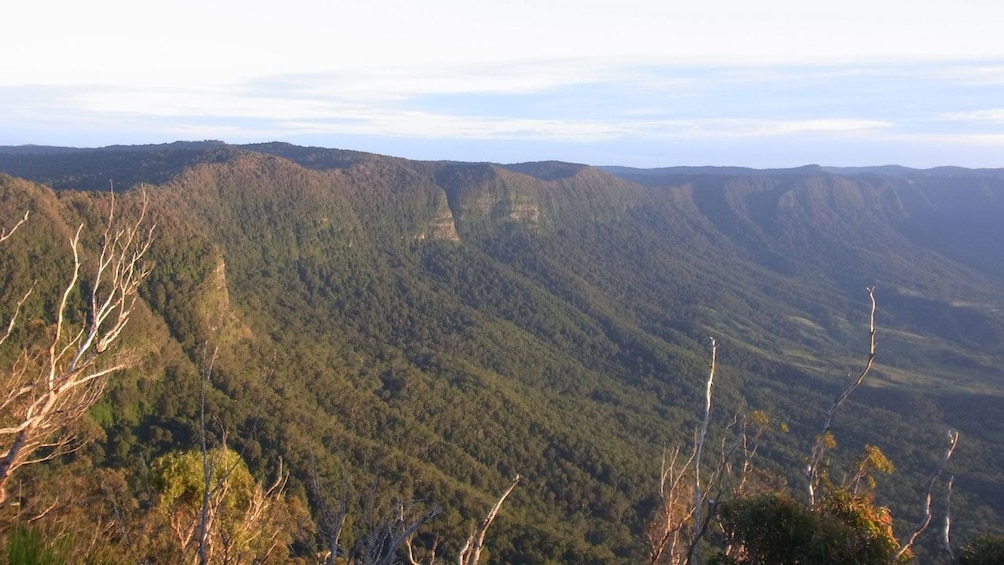 Show item 2 of 5. the green and mountainous landscape in Australia