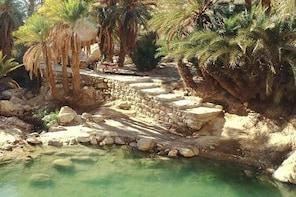 OASIS SAFARI: 2 DAYS Departure Djerba & Zarzis