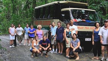 Daintree Rainforest & Cape Tribulation Tour