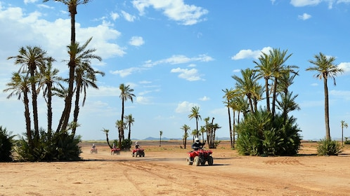 View of ATV riders going to the palm grove and desert in Marrakech